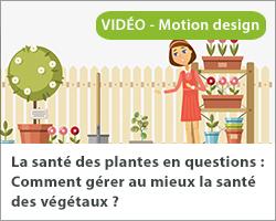 La santé des plantes en questions : Comment gérer au mieux la santé des végétaux ?Vignette INRAE Bretagne Normandie Pesticides