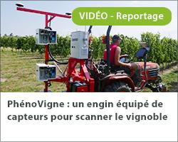 PhénoVigne : un engin équipé de capteurs pour scanner le vignoble
