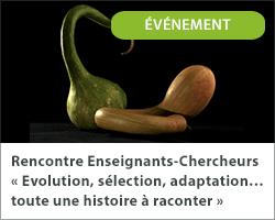 Rencontre Enseignants-Chercheurs « Evolution, sélection, adaptation…toute une histoire à raconter »