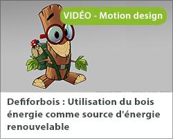 Defiforbois [Motion Design] : Utilisation du bois énergie comme source d'énergie renouvelable