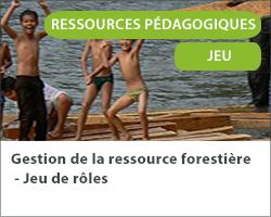 Gestion de la ressource forestière