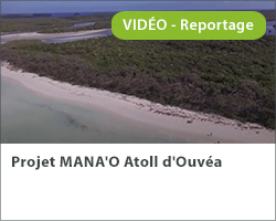 Projet MANA'O Atoll d'Ouvéa