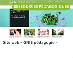 Site web « GNIS pédagogie »