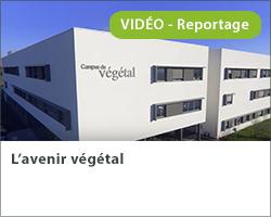 L'avenir végétal