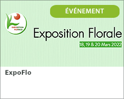 ExpoFlo