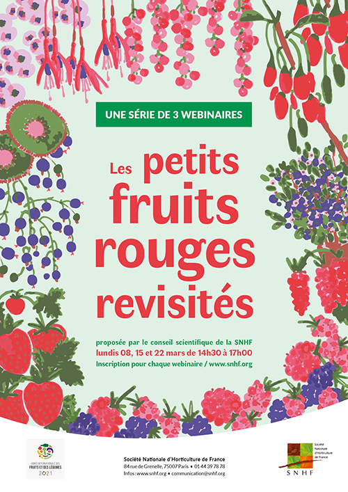 Les petits fruits rouges revisités