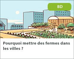 Pourquoi mettre des fermes dans les villes ?