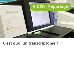 C'est quoi un transcriptome ?