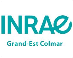 INRAE Grand-Est Colmar