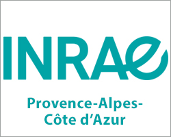 INRAE Provence-Alpes-Côte d'Azur