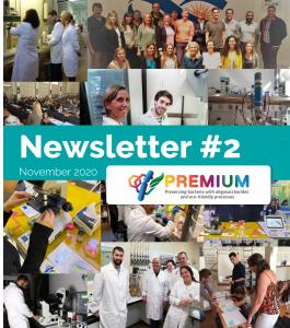 PREMIUM Newsletter #2