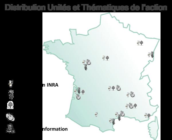 Distribution Unités et Thématiques du Projet