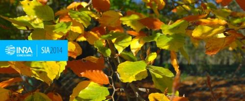 La Phénologie - Observer les Saisons du Vivant