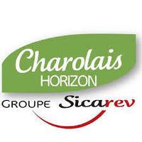 Charolais Horizon