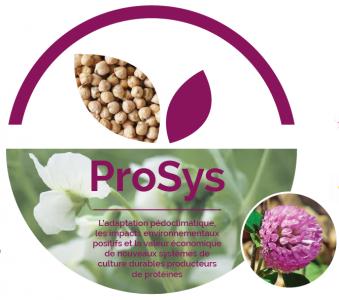 Les résultats de ProSys en quelques clics