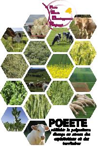 Tout savoir sur la polyculture-élevage