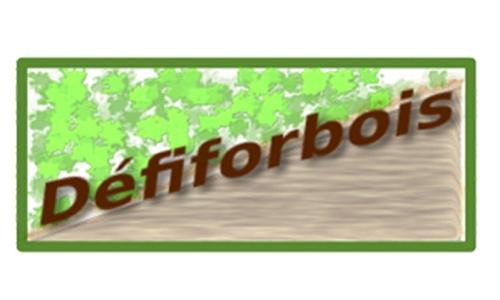 Le projet Défiforbois