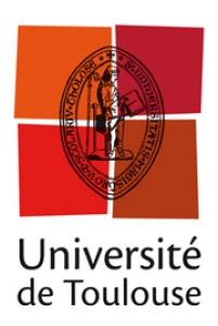 logo université de toulouse