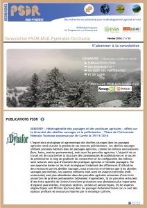 Newsletter n°38