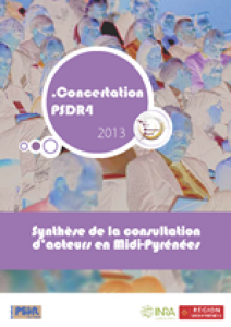 Couverture document Concertation PSDR4 - Synthèse de la consultation d'acteurs en Midi-Pyrénées