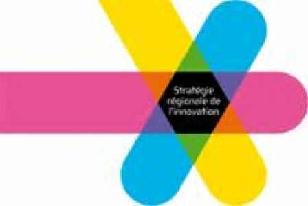 Logo SRI région midi-pyrénées