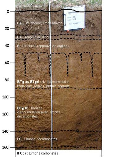 profil du sol du site QualiAgro