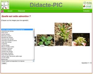 Copie d'écran du site Didacte-PIC