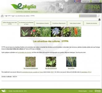 Ecran d'accueil HYPPA