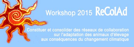 Bandeau-Workshop3