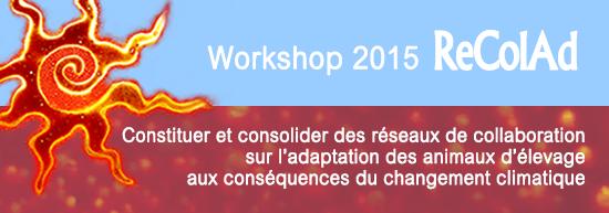 Bandeau-Workshop