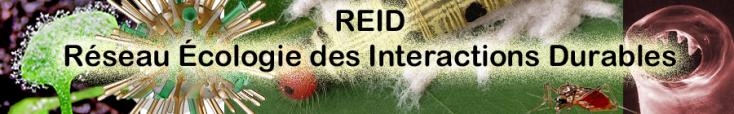 The Network: Réseau Ecologie des Interactions Durables (REID)
