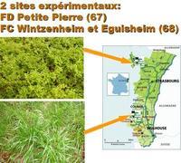 Localisation des sites de WE PP et végétation étudiée