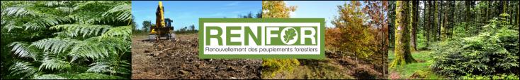 Bandeau site internet pôle RENFOR