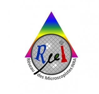 Logo du RµI