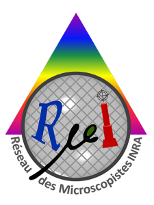 Logo RµI