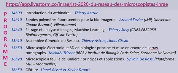Prog WEBJST2020 (image)