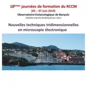 Les 18èmes Journées du RCCM