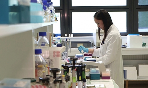 Contrats Doctoraux SPS