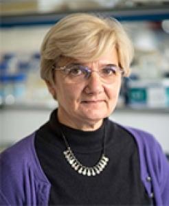 Françoise Budar