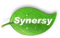 Synersy