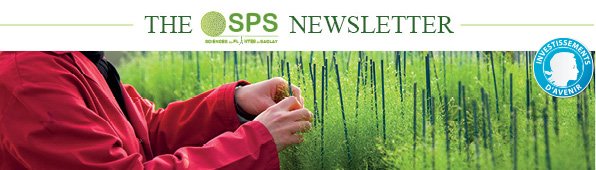 Newsletter SPS