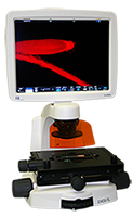 Microscope Evos