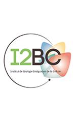 Logo I2BC Tour blanc