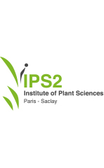 Logo IPS2 Tour blanc