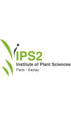 Logo IPS2 Tour blanc