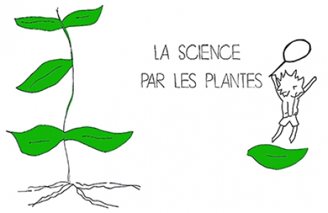 La science par les plantes : introduction à l'analyse génétique