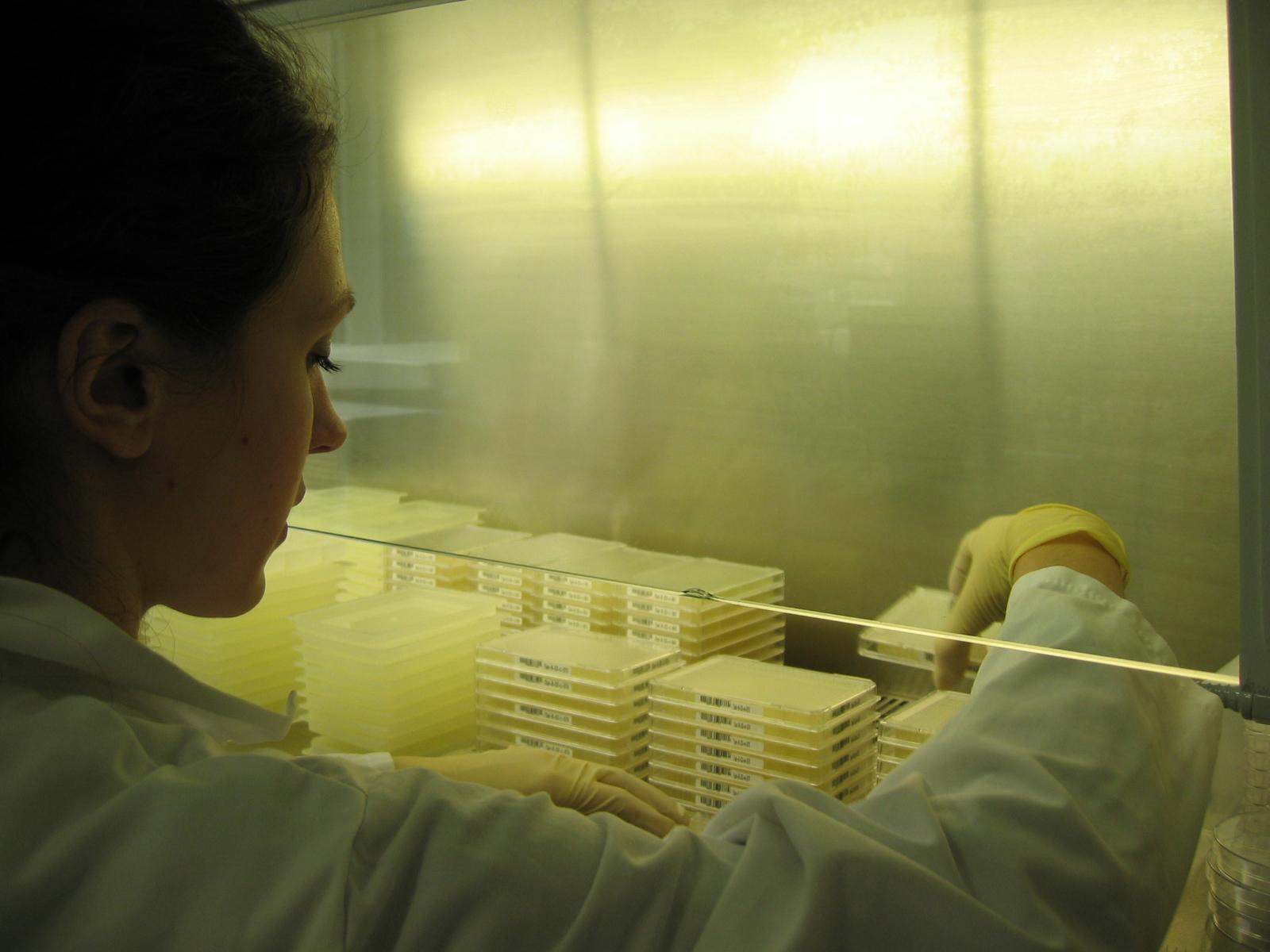 SAPS - laboratoires