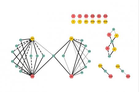 @Sandrine Lacour - les interactions entre les protéines virales (TBEV : hexagones rouges et LIV : hexagones oranges) et les protéines cellulaires d'I. ricinus (cercles bleus) sont représentées par des lignes noires pleines lorsque l'interaction a été identifiée par double hybride et validée par Gap repair, et en pointillé lorsque l'interaction a été identifiée par gap repair uniquement. L'épaisseur du trait représente la force de l'interaction entre une protéine virale et une protéine cellulaire, déterminée par l'utilisation d'un compétiteur de l'interaction, 3-amino-1,2,4-triazol
