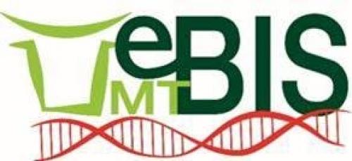 UMT eBIS