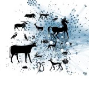 PCI Animal Science